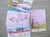 【東大寺門前市場】ポストカード