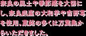奈良の風土や季節感を大切にし、奈良県産の大和芋や吉野葛を使用。菓銘の多くは万葉集からいただきました。