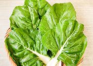 【門前市場】野菜の定期便